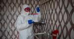 В Крыму зарегистрировано 293 случая новой коронавирусной инфекции