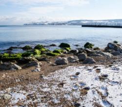 Цены на новогодний отдых в Крыму поставили новый рекорд
