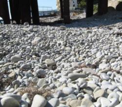 Арендатор пляжа в Ялте подал в суд на городские власти