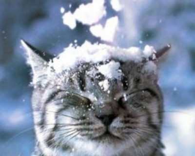Снег в Симферополе! (снежное видео)